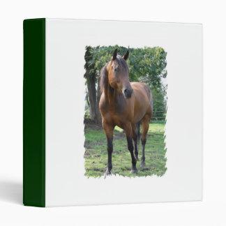Bay Thoroughbred Horse Binder