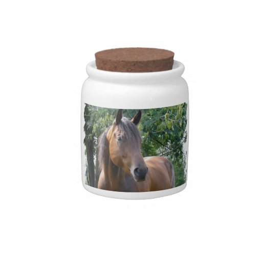 Bay Thoroughbred Horse  Candy Jar