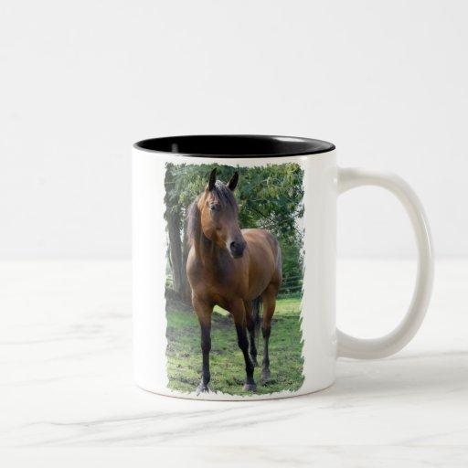 Bay Thoroughbred Horse Coffee Mug