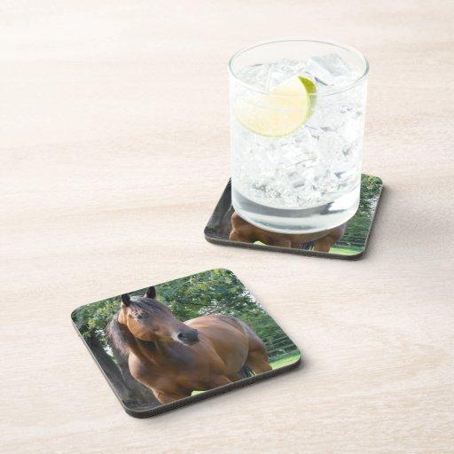 Bay Thoroughbred Horse Cork Coasters