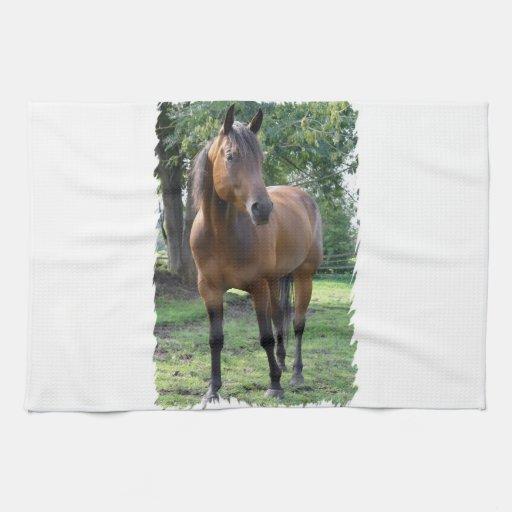 Bay Thoroughbred Horse  Kitchen Towel
