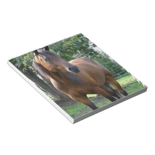 Bay Thoroughbred Horse Notepad