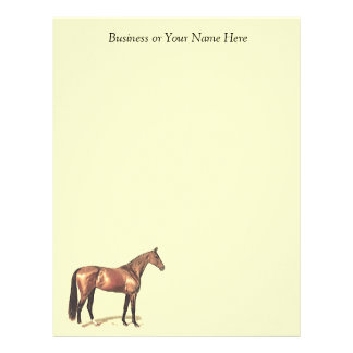 Bay Thoroughbred Horse Personal or Business Paper Letterhead