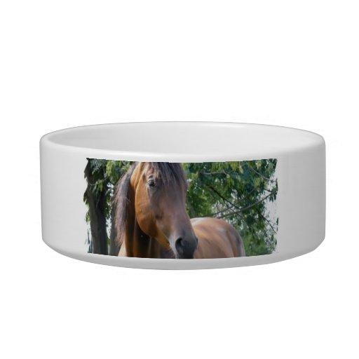 Bay Thoroughbred Horse  Pet Bowl Cat Food Bowl