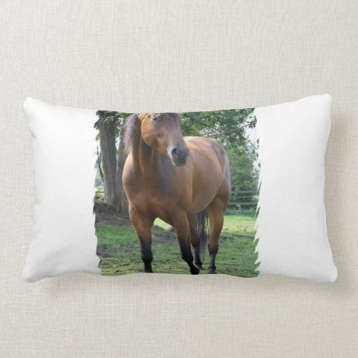 Bay Thoroughbred Horse Pillow
