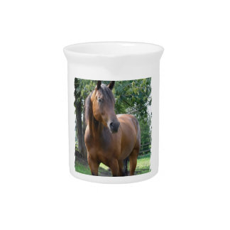 Bay Thoroughbred Horse  Pitcher