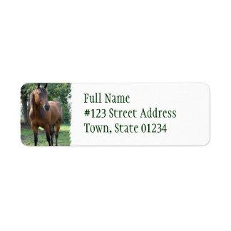 Bay Thoroughbred Horse Return Address Label