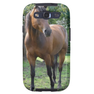 Bay Thoroughbred Horse Samsung Galaxy Case Galaxy SIII Case
