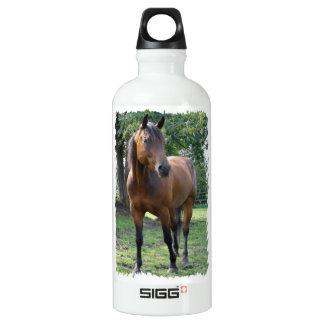 Bay Thoroughbred Horse  SIGG Traveler 0.6L Water Bottle