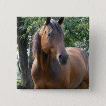 Bay Thoroughbred Horse Square Pin