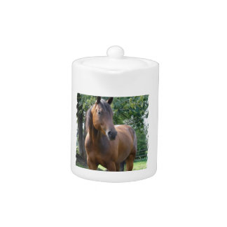 Bay Thoroughbred Horse  Teapot