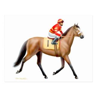 Bay Thoroughbred Race Horse Postcard