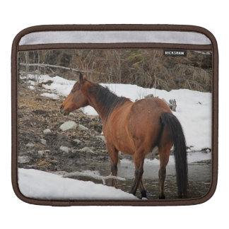 "Bay Winter Horse ""Year of the Horse"" Equine photo Sleeve For iPads"