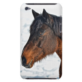 "Bay Winter Mare ""Year of the Horse"" Equine Photo Barely There iPod Cases"