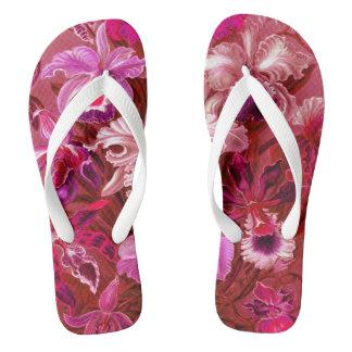Baya de color de malva rosada tropical de las