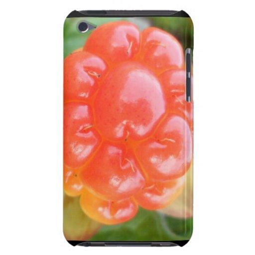 baya de color salmón iPod touch protectores