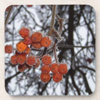 Bayas anaranjadas congeladas posavasos de bebidas