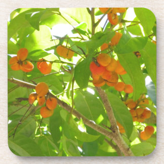 Bayas anaranjadas posavasos