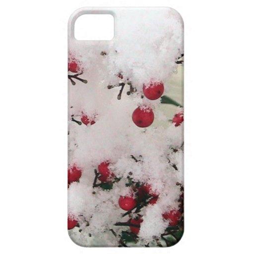 Bayas de la nieve iPhone 5 carcasa