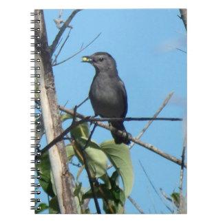 Bayas de los frunces del Catbird de la madre a Cuaderno