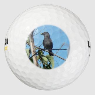 Bayas de los frunces del Catbird de la madre a Pack De Pelotas De Golf