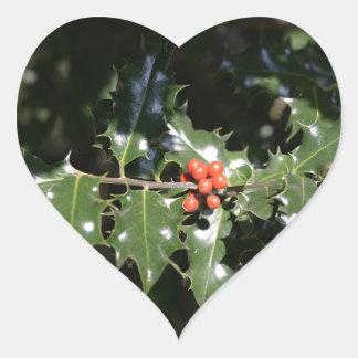 Bayas del acebo del navidad colcomanias corazon personalizadas