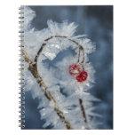 Bayas del hielo libros de apuntes con espiral