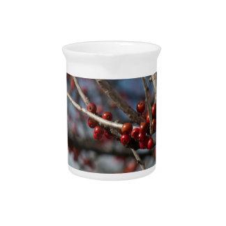 Bayas del invierno jarras para bebida