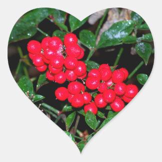 Bayas del navidad pegatina en forma de corazón