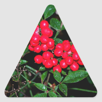 Bayas del navidad pegatina triangular