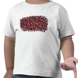 Bayas rojas del Himalaya Camiseta