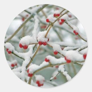 Bayas rojas en la nieve pegatina redonda