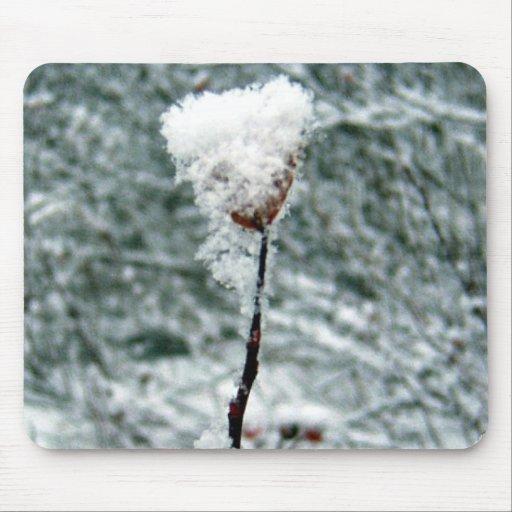 Bayas rojas nevadas 2 Mousepad