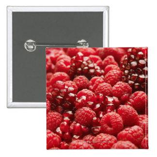 Bayas rojas sanas y nutritivas pin cuadrado