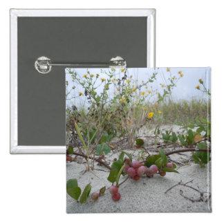 Bayas salvajes en la playa pin