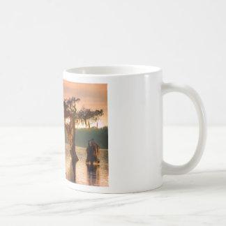 Bayou Sunset 5769 Mug
