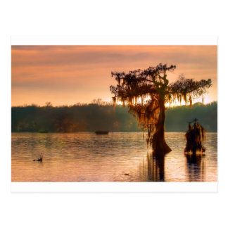 Bayou Sunset 5769 Post Cards