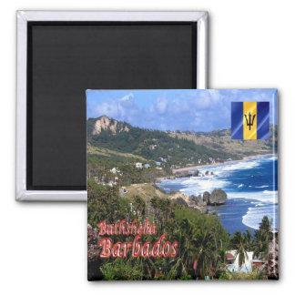 BB - Barbados - Bathsheba Magnet