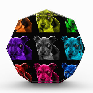 bb del arte pop del perro del pitbull 0785