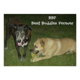BBF - Best Buddies Forever Poster