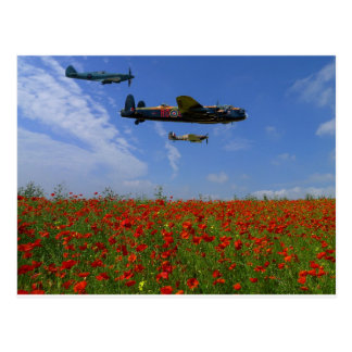 BBMF and poppies Postcard