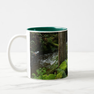 BC Forest Creek Ferns Wilderness Nature Drinkware Two-Tone Coffee Mug