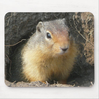 BC Ground Squirrel Mouse Pad