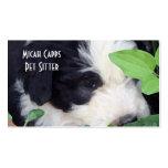 "BC ""Peek-a-Boo"" - Old English Sheepdog puppies Business Card Templates"