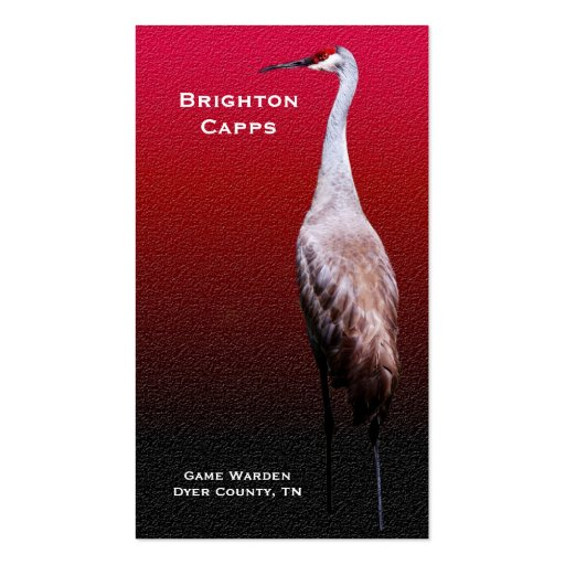 BC Sandhill Crane in Profile Business Cards