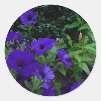 BC summer gardens 3 Round Stickers