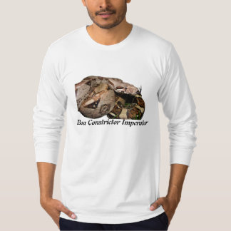 BCI American Apparel Long Sleeve (Fitted) T-Shirt