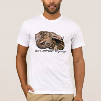 BCI American Apparel T-Shirt (Fitted)