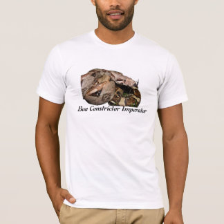 BCI Basic American Apparel T-Shirt
