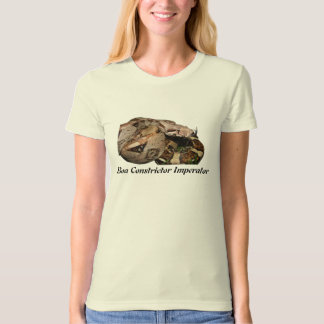 BCI Ladies Organic T-Shirt (Fitted)